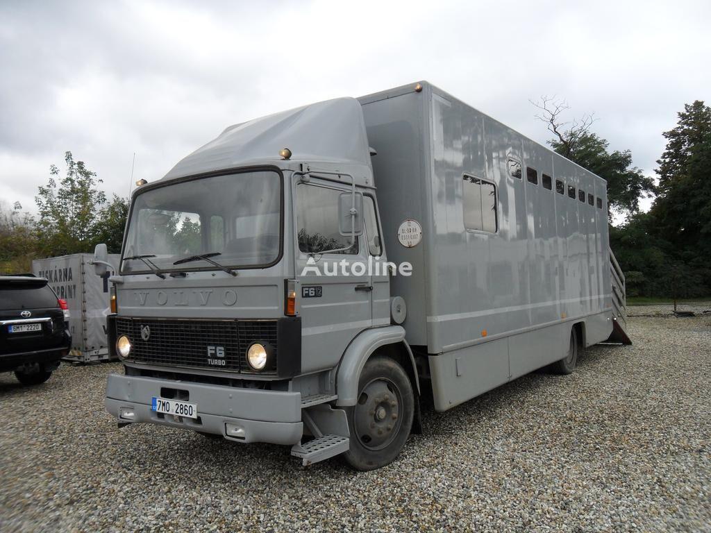 شاحنة نقل المواشي VOLVO F612 pro přepravu koní